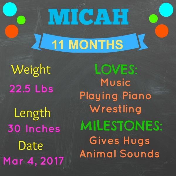 MICAH 11 MONTH STATS